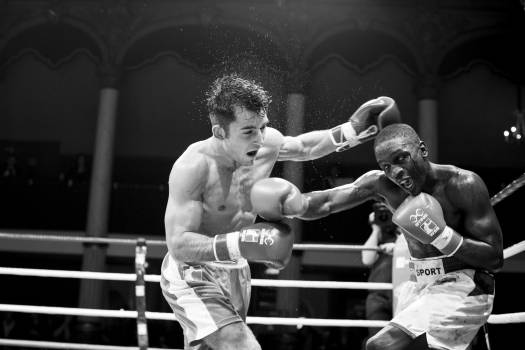 Boxer Combatant Person #259779