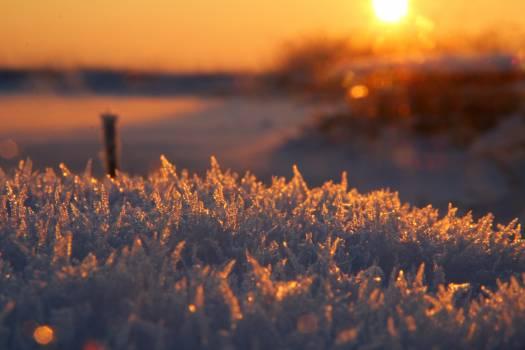 Sun Sunset Sky #260378