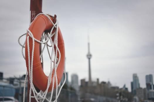 Basketball Ball Sport Free Photo