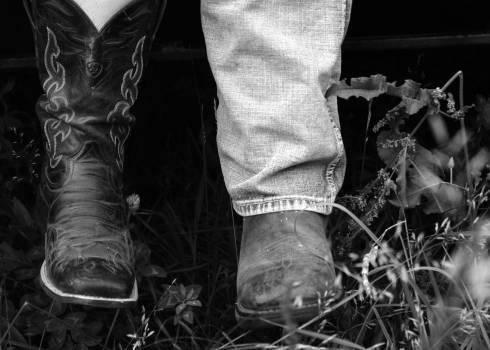 Cowboy boot Boot Footwear Free Photo