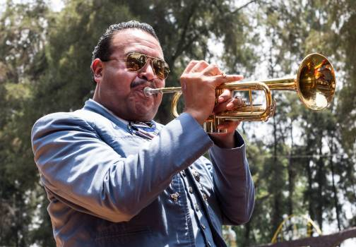 Cornet Brass Wind instrument Free Photo