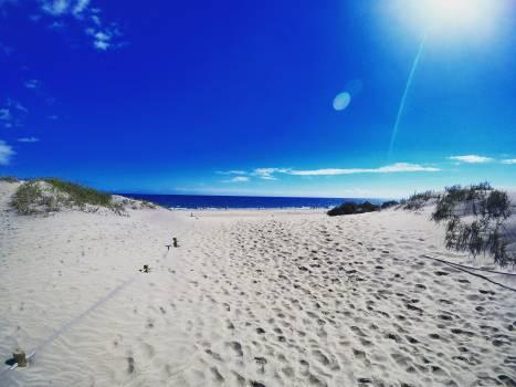 Beach Sea Sand #262321