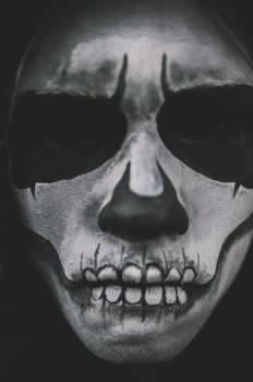 Los Muertos #26280