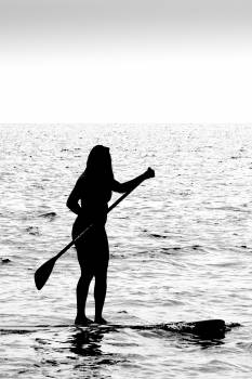 Paddle Blade Oar Free Photo