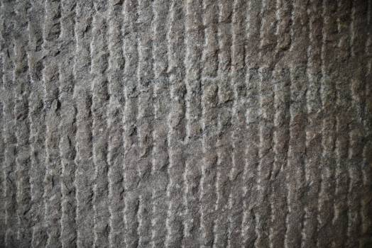 Texture Material Surface Free Photo