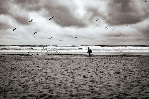 Rainy, but beach day Free Photo
