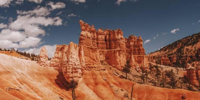 Canyon Ravine Valley #263943