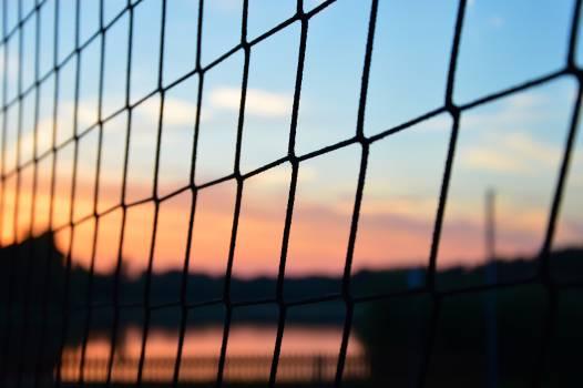 the net #26503