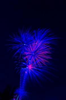 Firework Light Explosion Free Photo
