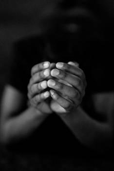 Hand Hands Human #265402