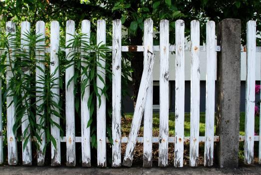 Picket Fence Free Photo