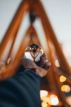 Binoculars Insect Ladybug Free Photo