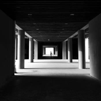 Interior Architecture Room Free Photo