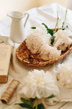 Bouquet Flower arrangement Food #269584