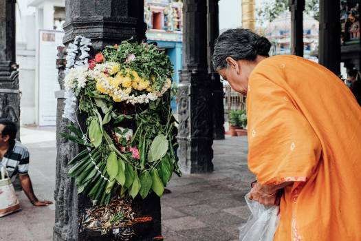 Monk Fan Follower Free Photo