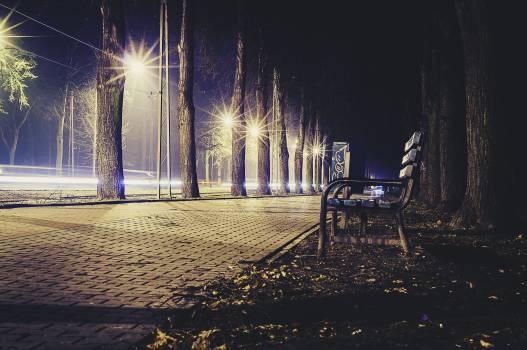 Night Free Photo