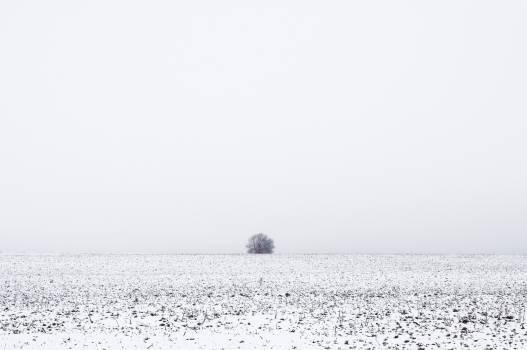 Solitude Free Photo