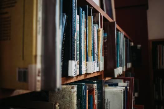 Shelf Bookcase Library Free Photo