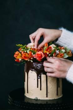 Bouquet Flower Flower arrangement #273796