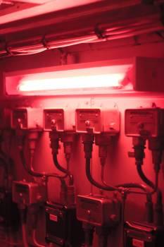 3d Light Render Free Photo