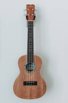 Guitar Acoustic Music Free Photo