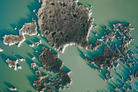 Map Sea Reef Free Photo