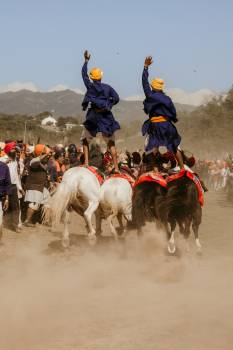 Cowboy Horse Sport Free Photo