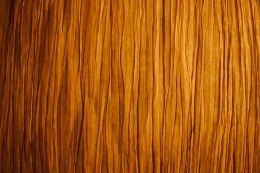 Texture Pine Material Free Photo