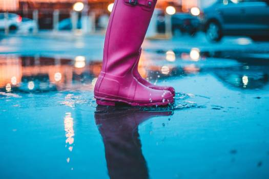 Arctic Frigid zone Footwear Free Photo