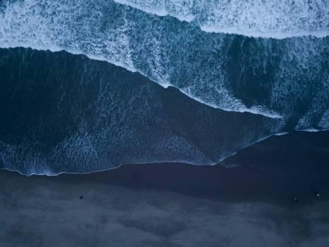 Ice Stingray Water Free Photo