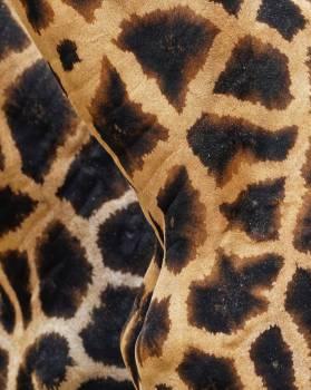 Leopard Feline Fur #280809