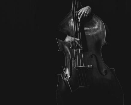 Bass Music Instrument Free Photo