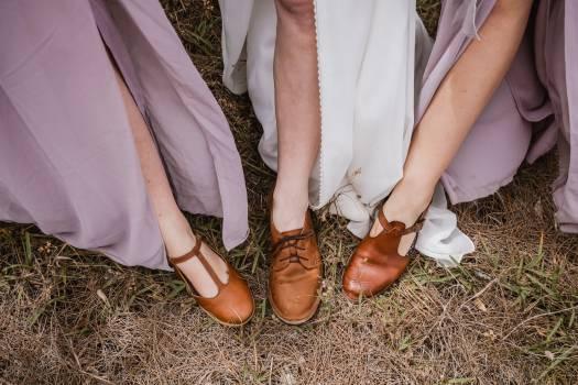 Sandal Shoe Footwear Free Photo