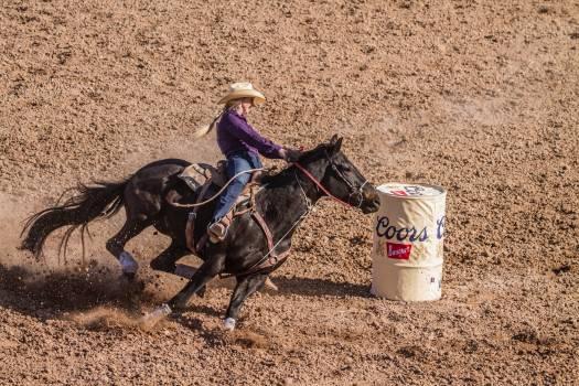 Horse Cowboy Vaulting horse Free Photo