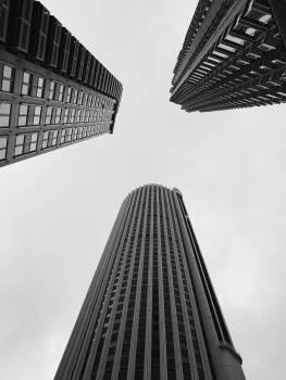 Avenue Skyscraper City Free Photo