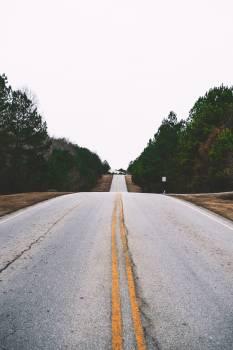 Expressway Road Highway #288337