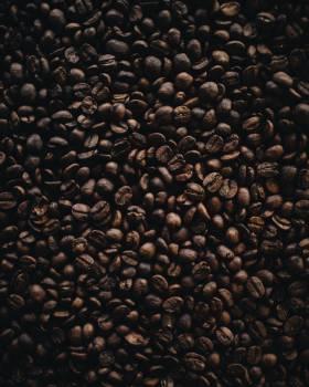Coffee Bean Caffeine #288844
