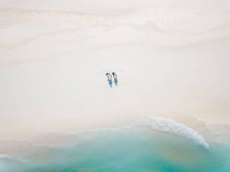 Water Clear Ocean Free Photo