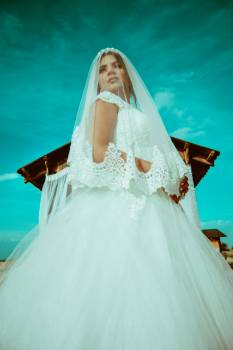 Skirt Dress Bride #290246