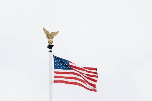 Flag Emblem Flagpole #292363