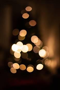 Light Bright Shiny Free Photo