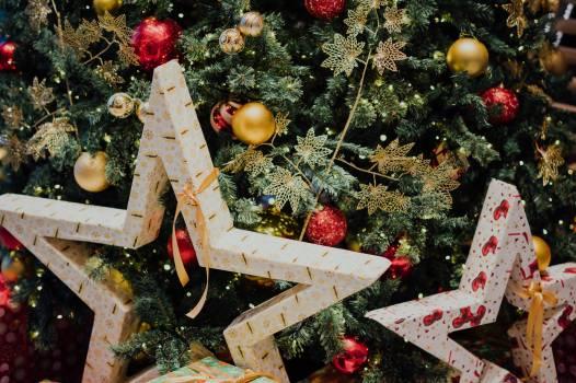 Tree Decoration Holiday Free Photo
