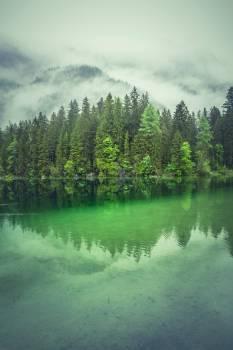 Lake Forest Landscape #297312