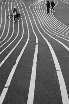 Asphalt Maze Avenue Free Photo