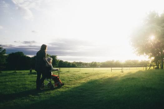 Grass Sky Field #301111