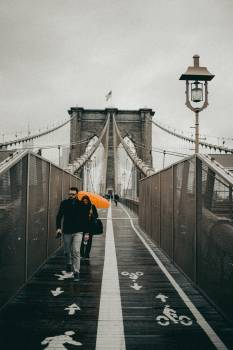 Suspension bridge Bridge Structure #304290