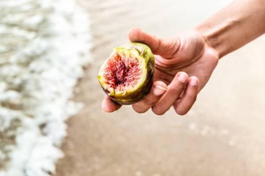 Fig Edible fruit Fruit #304547