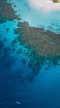 Reef Coral reef Ocean Free Photo