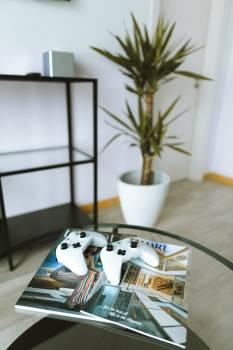 Screen Table Windowsill Free Photo
