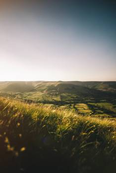 Landscape Grass Field #308180